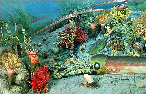 Strange creatures with hard shells and exoskeletons lived in the oceans.