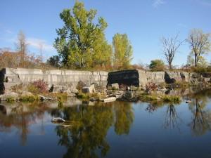 The Fisk Quarry Preserve
