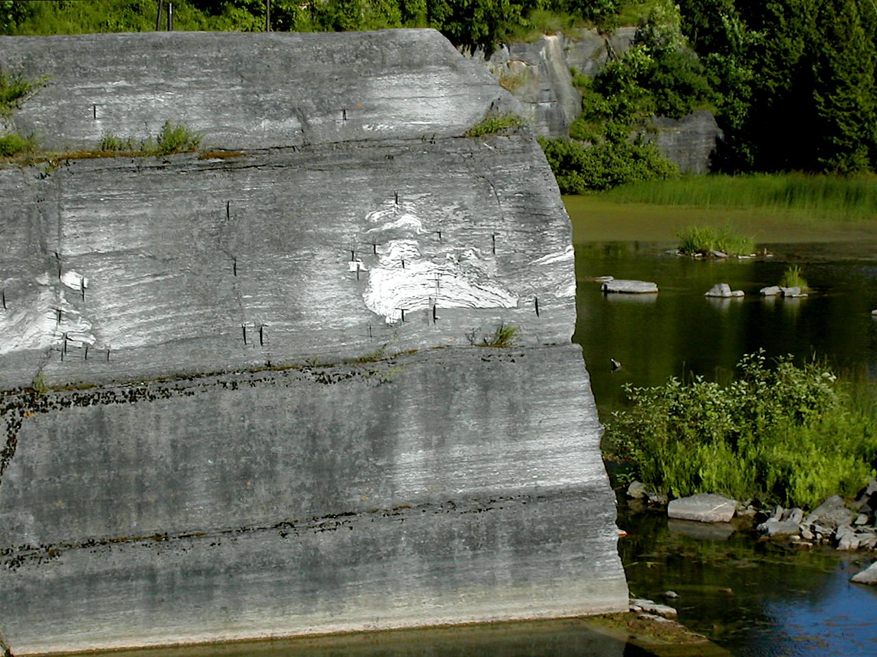 "Fossil ""stromatoporoids"" in the quarry walls."