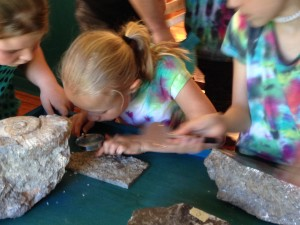 Exploring 460 Million Year Old Fossils